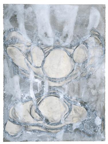 Veiled Vertebra
