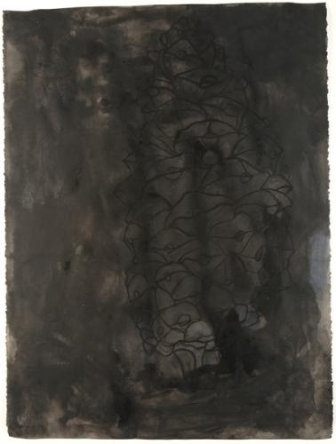 Dark Pine Cone
