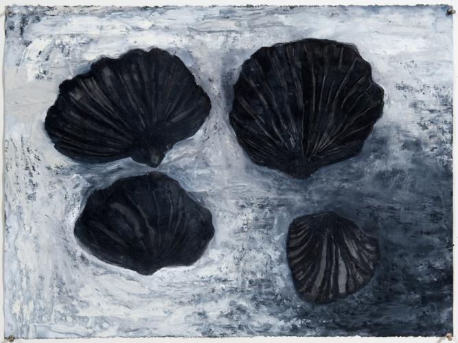 Four Dark Shells