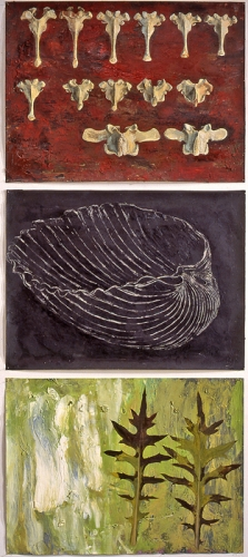 Group of 3 with Black Sgraffito Shell